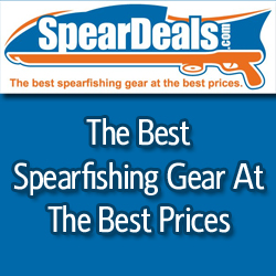 SpearDeals