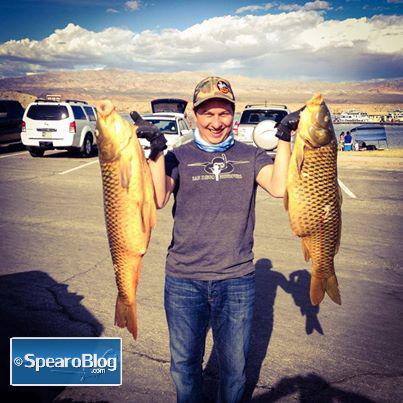 Spearfishing-Carp-1