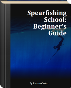 Spearfishing-School---Beginners-Guide